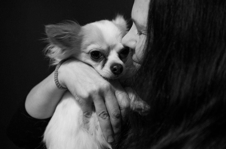 koira tyttö mv pieni-0848